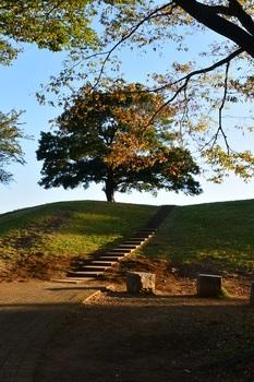 希望への階段.jpg